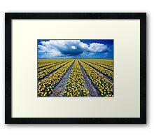 Spring Fields Framed Print