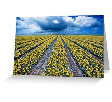 Spring Fields Greeting Card