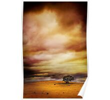Lonely Tree. Poster