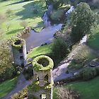 Blarney Castle by Melissa Purves