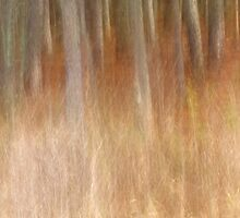 Silent Passage by Bill Morgenstern