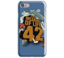 The Meaning of Life iPhone Case/Skin