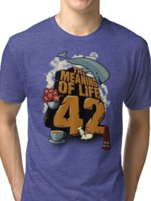 The Meaning of Life Tri-blend T-Shirt