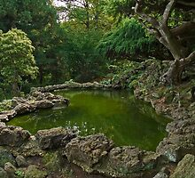 Japanese Garden by andykazie