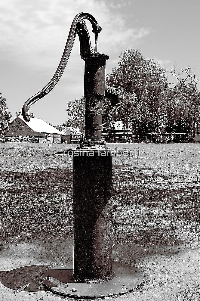 Alice Springs Telegraph Station  by Rosina  Lamberti