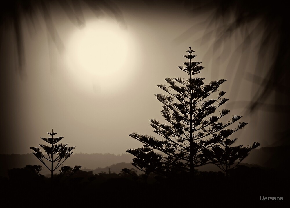 Sepia Sunset by Tony Steinberg