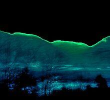 Magical Night by Jane Tripp