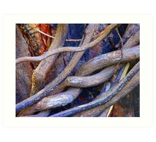 Limbs Entwined Art Print