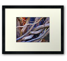Limbs Entwined Framed Print