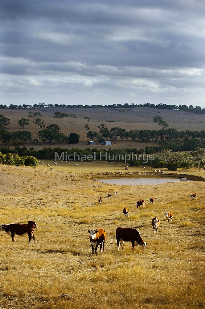 Typical Australian Terrain by Michael Humphrys