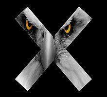Creature Cross (Glaring Eagle) - Black by GeorgeOC