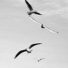 Flying souls by LegalAlien