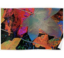 Leaf Abstract #2 Poster