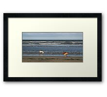 Last one there smells! Framed Print