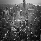 New York (v) by Matthew Bonnington