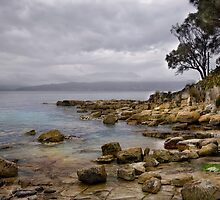 Opossum Bay by Karine Radcliffe