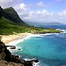 View of Waimanalo Bay  by Marcaribe