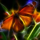 Abstract Butterfly by Michael D'Andrea Diaz