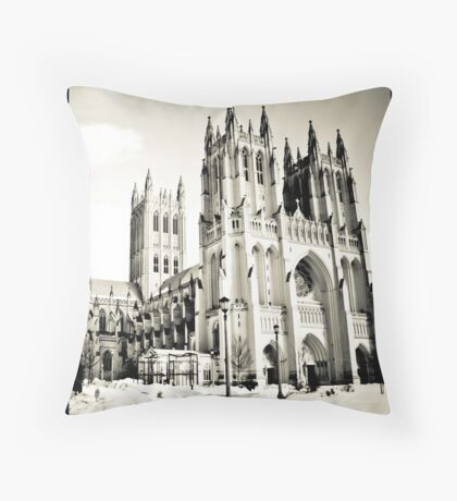 Washington DC Winter Throw Pillow