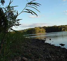 Lake Going To Sleep by Robert  C Olson