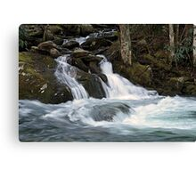 Mannis Branch Falls Canvas Print
