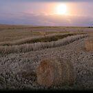 Harvest Moon by Chris Coetzee