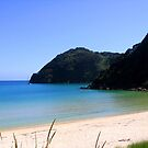 Abel Tasman&#x27;s Beatiful Beaches by SinaStraub