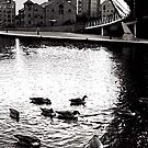 Castlefield by chancla