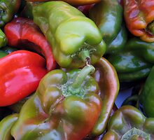 CHILI PEPPER RED GREEN  by SofiaYoushi