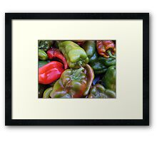 CHILI PEPPER RED GREEN  Framed Print