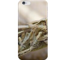 Grasshopper Macro iPhone Case/Skin