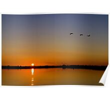 Cranes Flying Over Horsey Mere Poster
