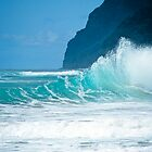 Hawaii's Surf Beaches by kevin smith  skystudiohawaii