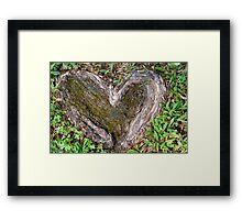 Rooted in Love II Framed Print