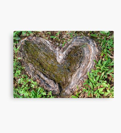 Rooted in Love II Canvas Print