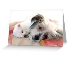 Dora and Mallow Greeting Card