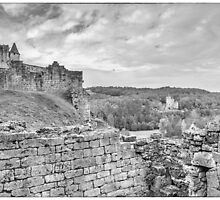 BW France Chateau Commarque by Steven House