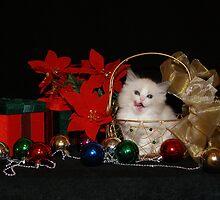 Christmas Goodies by SLKensinger