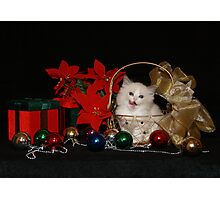 Christmas Goodies Photographic Print