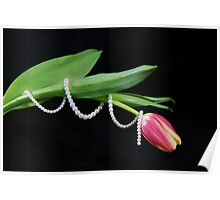 Tulip Twist Poster