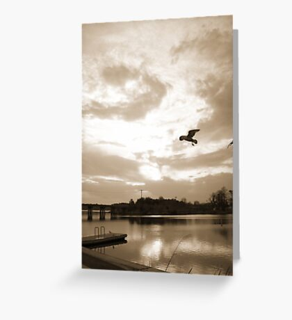 Afloat in the skies 3 Greeting Card