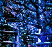 Night Passage by Wib Dawson