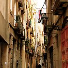 Barcelona alley by Mike Shin