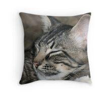Sleeping Buster Throw Pillow