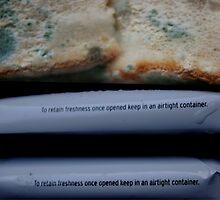 Sandwich by Clare Bentham