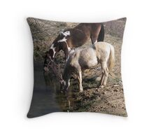 horses at pond Throw Pillow