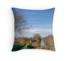 The Aylesbury Arm Throw Pillow