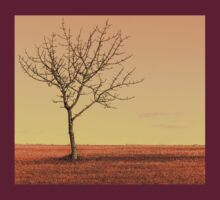 Lone Tree by Gene Cyr
