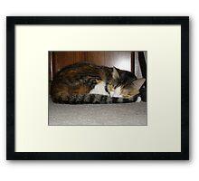 Lucy Sleeping Framed Print