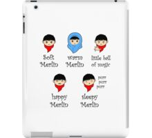 Soft Merlin, Warm Merlin... iPad Case/Skin